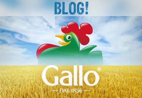 BLOG-GALLO
